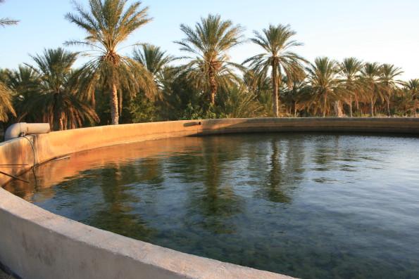 Tilouche_Fossiles Wasser in der Wüste